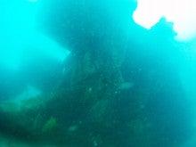 海南潜水 hainandivingのブログ-AOW17