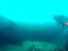 海南潜水 hainandivingのブログ-AOW11
