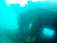 海南潜水 hainandivingのブログ-AOW16