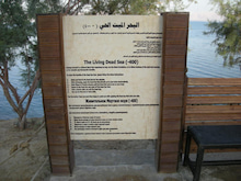 【とうとう】四十路女のありふれた日常-死海の碑