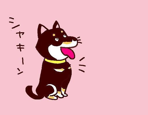 トラキチさんちの黒い犬