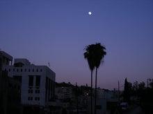 【とうとう】四十路女のありふれた日常-ダウンタウンの夕暮れ。