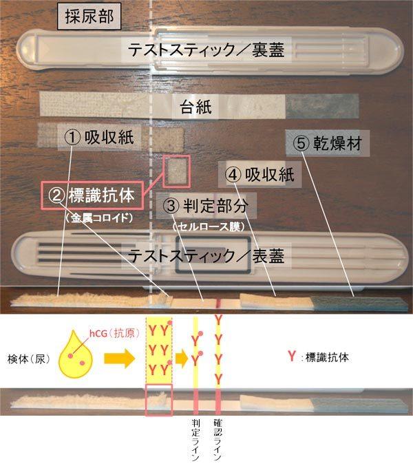$ピカ待ちブログ☆-ドゥーテスト分解画像・解説
