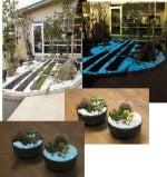 植物と雑貨のinnovation-蓄光石 ルミナ・ストーン