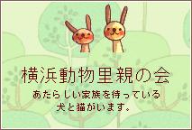 シアカウ-ねこたちと手作り小物でシアワセカウント-横浜動物里親の会HPへ