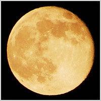 $川崎*☆ハーブ、リンパマッッサージ,整体,,,エステ&リラクサロン☆*Lemongrass -満月様