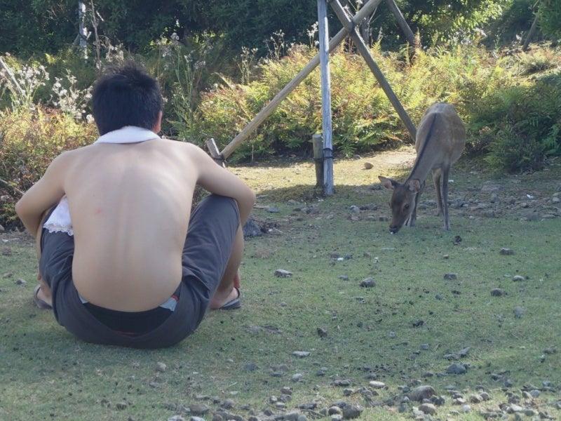 歩き人ふみの徒歩世界旅行 日本・台湾編-鹿と語らうまさ君