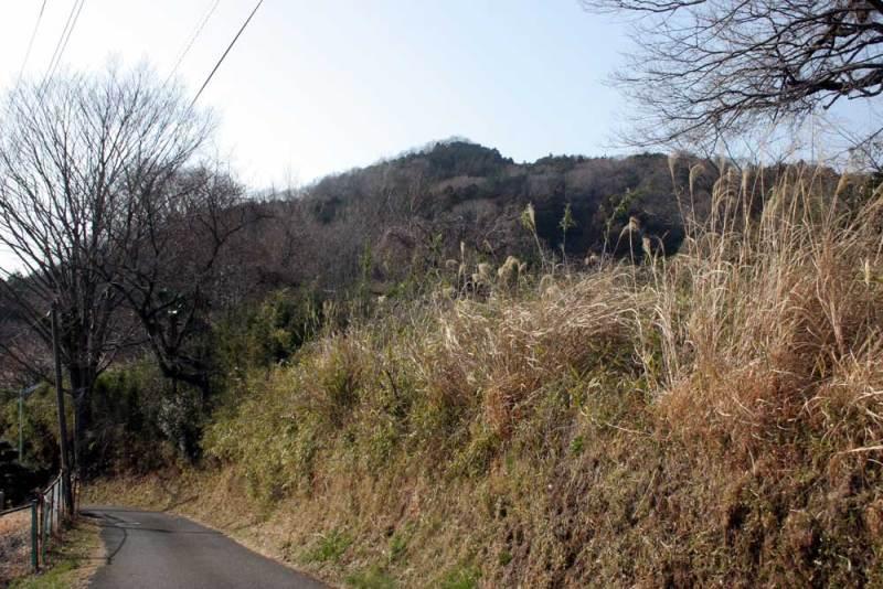 田代城/富士居山