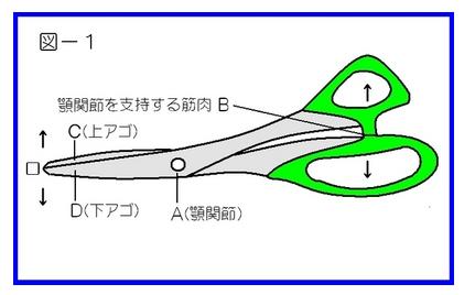 <札幌整体 碧い宙 臨床報告>-図1