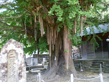 和歌山県田辺市ネイル・まつげサロンKuRumi