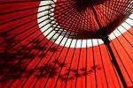 ルチアーノショーで働くスタッフのブログ-和傘