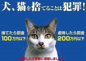 呉市動物愛護センター-罪のない僕達の命は期限付き