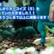 瑠璃蝦さんのターコイ…