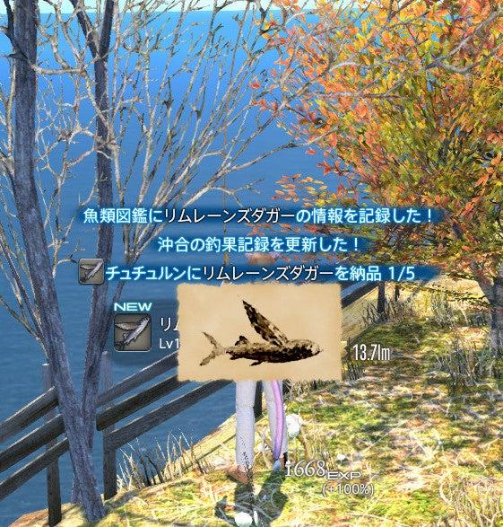 ゲーム三昧! 狩人と猫の冒険宿