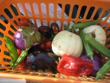地産地消ネットワークみえのブログ-野菜