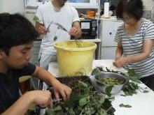 コミュニティ・ベーカリー                          風のすみかな日々-枝豆1