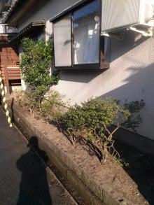 """新潟便利屋 新潟""""お助け隊""""のブログ"""