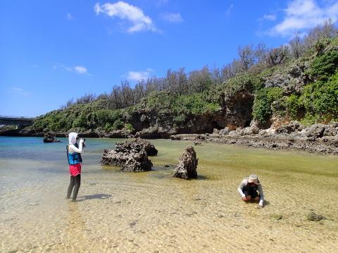 宮古島シーカヤックとシュノーケルツアーの島日和