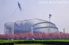 中国大連生活・観光旅行ニュース**-大連 貝殻博物館