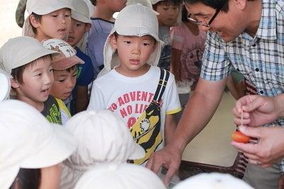 若草幼稚園-お泊り保育21