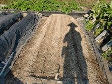 耕作放棄地を剣先スコップで畑に開拓!有機肥料を使い農薬無しで野菜を栽培する週2日の農作業記録 byウッチー-130909極早生たまねぎマッハ種蒔き09