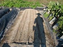 耕作放棄地を剣先スコップで畑に開拓!有機肥料を使い農薬無しで野菜を栽培する週2日の農作業記録 byウッチー-130909極早生たまねぎマッハ種蒔き10
