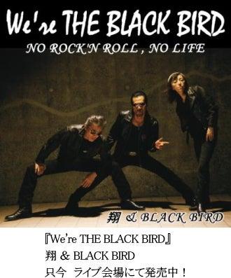 $横浜銀蝿 翔 ~ It's show time! ~