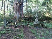 広島県福山市「Holistic Therapy Life」 ~心理セラピスト KazukoのHealing Life~-1378895432551.jpg