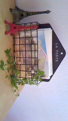 ○ Ombrage mocomoco  ○ 自宅Salon  ○-130912_0833~01.jpg