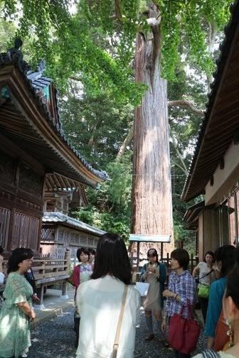 ショコラスタイル★レポートマニア編-事任八幡宮4
