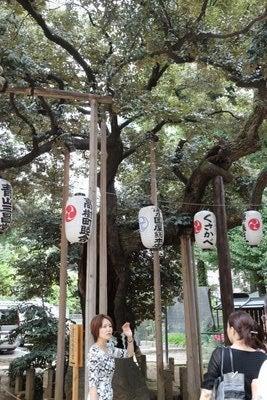 ショコラスタイル★レポートマニア編-金王八幡2