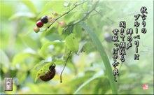 フォト短歌Amebaブログ-フォト短歌「秋生りのベリー」