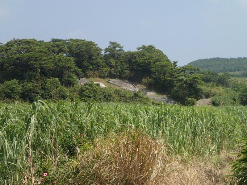 歩き人ふみの徒歩世界旅行 日本・台湾編-遠くの大墓