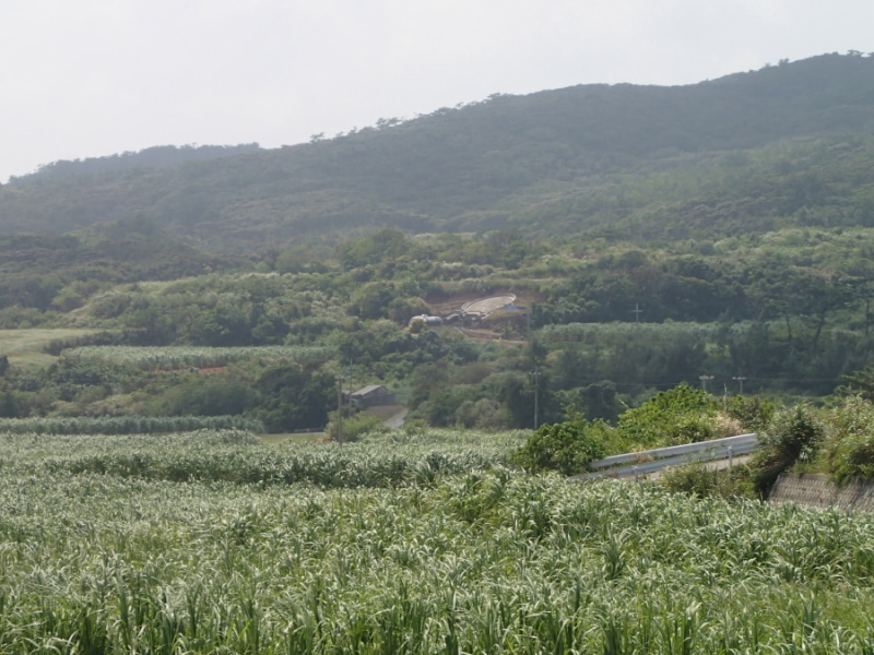 歩き人ふみの徒歩世界旅行 日本・台湾編-遠くの大墓2