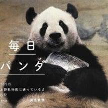 『毎日パンダ』