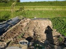 耕作放棄地を剣先スコップで畑に開拓!有機肥料を使い農薬無しで野菜を栽培する週2日の農作業記録 byウッチー-130917ジャガイモデジマ0827定植第1回目土寄07