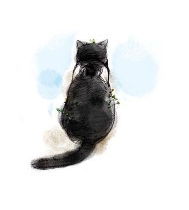 $「猫の後ろ姿」