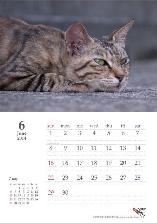 ねこ会議-カレンダー2013-06