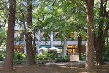 旅行、グルメ巡礼-日比谷公園、松本楼