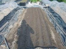 耕作放棄地を剣先スコップで畑に開拓!有機肥料を使い農薬無しで野菜を栽培する週2日の農作業記録 byウッチー-130923中晩生たまねぎネオアース種蒔き12