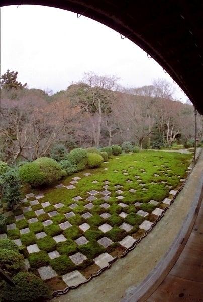 盆栽丼 BONSAI★DON 特盛り入りました~♪-東福寺