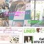 ◆幸せレシピ♡婚活レ…