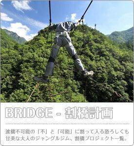 $6Frogs - 行ってみたら凄かった。 │ 廃墟や廃村、秘境や遺構の調査レポート-廃墟 海外 連載 6frogs 割橋 吊橋 廃橋