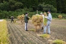 農游徒然日記
