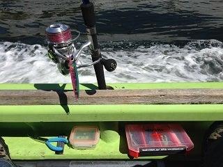ニジマスの釣り方・仕掛け ニジマス釣りをはじめよう! 「釣りき」ブログ