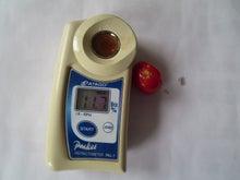 須藤物産トマト屋さんのブログ-須藤物産2013.10月糖度調査ドルチェ