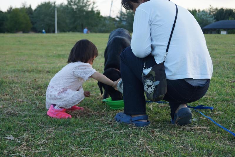 スバルと言う名の幸せ配達犬☆