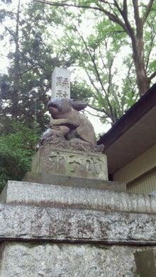 所沢の犬猫専門ペットシッタートコトコ 栗原明子-狛兎