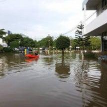 タイ25県で洪水、8…