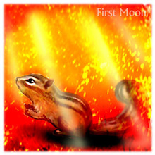 $First Moon 糸宇の日記-2013年秋のリス